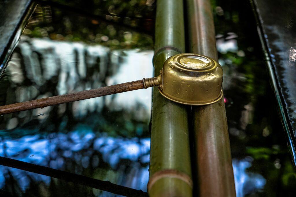 L'origine del bambù