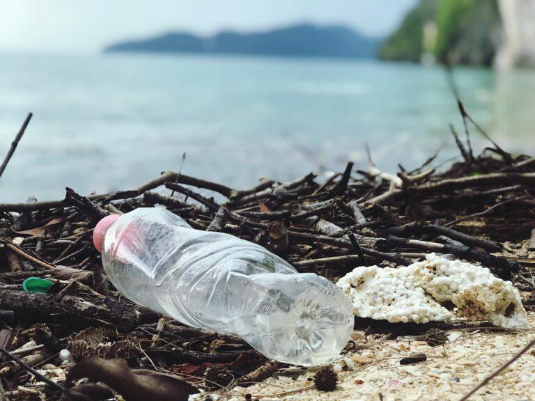 Il bambù sostituisce la plastica