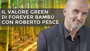 Perché il bambù fa bene all'ambiente