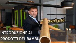 Cosa si fa con il bambù?